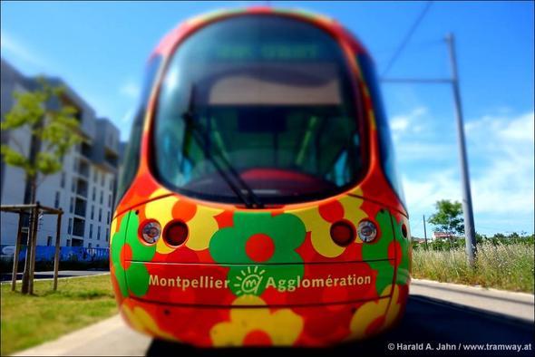 - (Frankreich, Klassenfahrt, Ausflug)