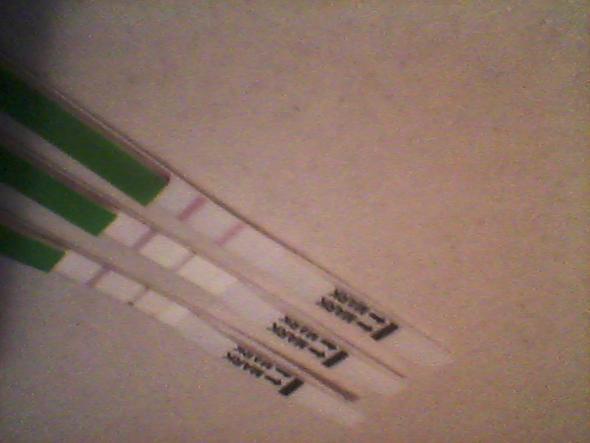 schwanger odrr nicht - (Schwangerschaft, Kinderwunsch, ovulationstest)
