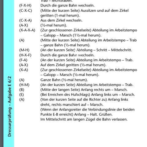 E6/2 Teil 2 - (Pferde, Turnier, Dressur)