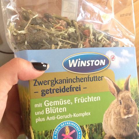 Morgens  - (essen, Kaninchen, Hasen)