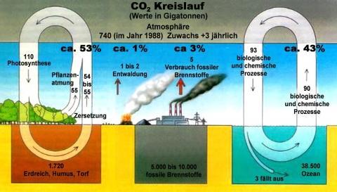 Der CO2-Kreislauf als Beispiel für die Kreisläufe dieser Erde. Der Schöpfer hat alles so genial gemacht, daß es auf dieser Erde keinen Abfall gibt! http://der-weg.org/klima/co2-kreislauf.html - (Menschen, Pflanzen, Welt)