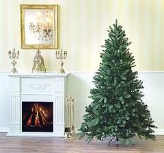Bilduntertitel eingeben... - (Weihnachten, Ratgeber, Baum)