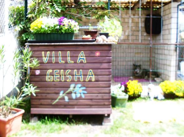 Ihre Wohnung : Villa Geisha - (Tiere, Sprache, Tierheimhund)