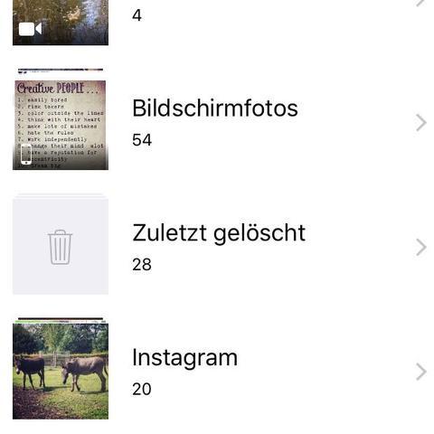 Screenshot von einigen Alben in der Foto-App! - (iPhone, Apple, ios)