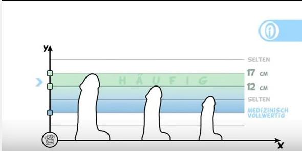 Durchschnittlicher penis umfang