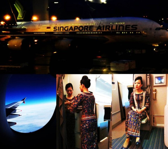Flug mit Singapore Airlines nach New York - (fliegen, Flug, New York)