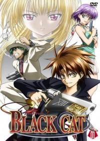 Black Cat - (Anime, empfehlen)
