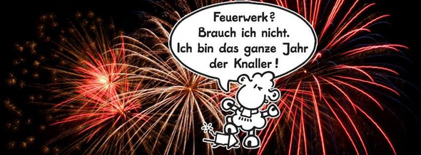 kein Feuerwerk - (Boeller, Neujahr Böller)