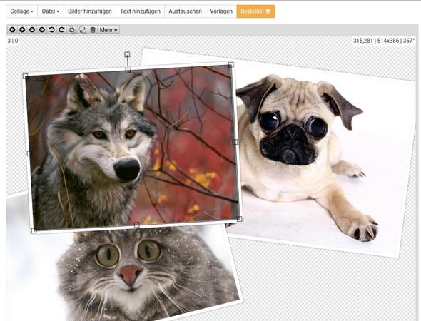 Collagen online mit fotocollagen.de erstellen - (Grafik, Bildbearbeitung, Vortrag)
