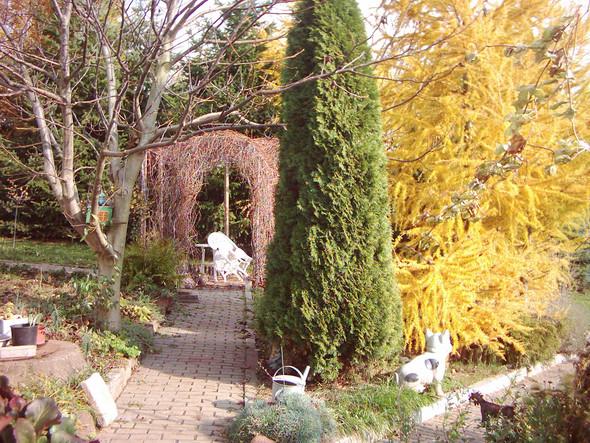 Herbst - (Ideen, Garten)