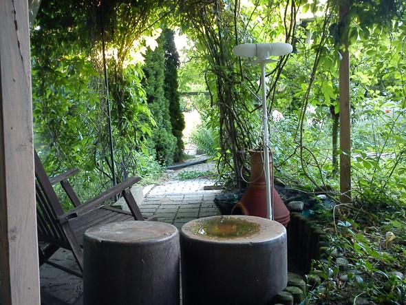 Blick aus der grünen Laube - (Ideen, Garten)