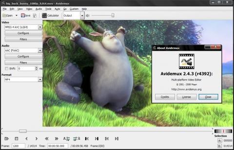 Bilduntertitel eingeben... - (Computer, Video, Programm)