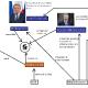 Politisches System EU
