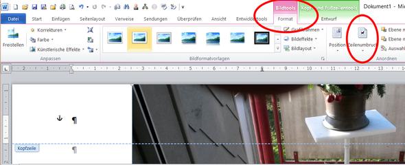 - (Word, Lebenslauf, Microsoft Word)