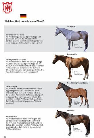 Mattes Sattelgurt-Ratgeber - (Pferde, Reiten, Pony)