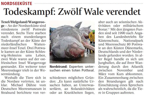 Wale - (Referat, Wale, Leitfrage)