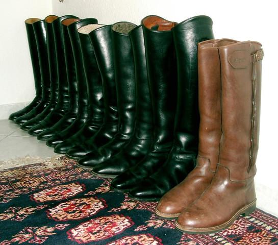 Meine Sammlung - (Schuhe, reiten, Leder)