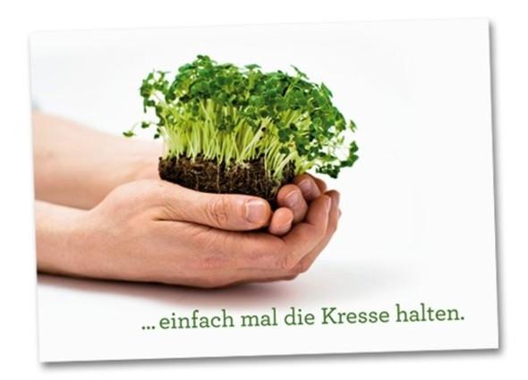 Kresse - (Youtube, Minecraft)