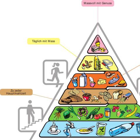 Links - (Ernährung, Wissen, Alltag)