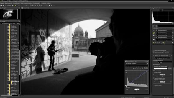 Capture NX-D1 - (Computer, Programm, Foto)