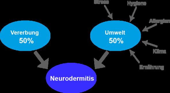neurodamitis einflüsse - (Haut, Neurodermitis)