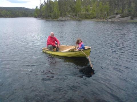 Beim Boot rausziehen - (Preis, Welpen, Neufundländer)