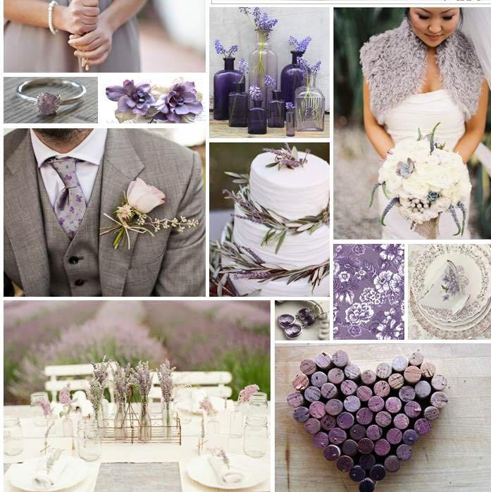 Welche Farben Passen Zu Einer Rosa Hose : Passende Farben zu einer Zart Lila Tischdecke (Hochzeit)?