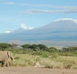 Der Berg Kibo, höchster Berg Afrikas - (Erdkunde, Afrika)
