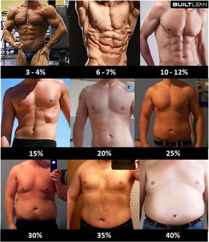 Körperfett - (Gewicht, fett, dick)