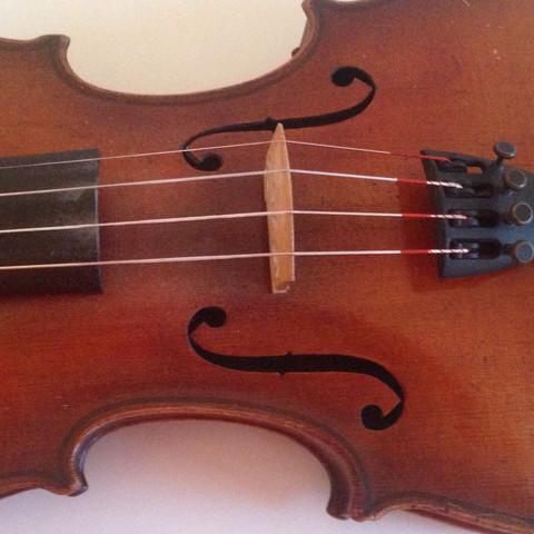 Die Saiten und der Steg - (Geige, Geigenbauer)