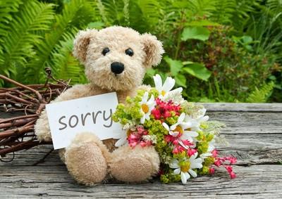 - (Blumen, Entschuldigung)