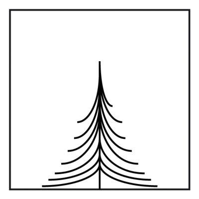 Nicht nadelnder Tannenbaum - (Freizeit, Weihnachten, Zitat)