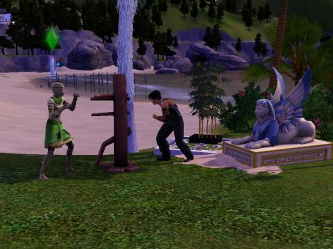 - (Computer, Sims 3)