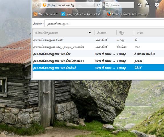- (Internet, Firefox)