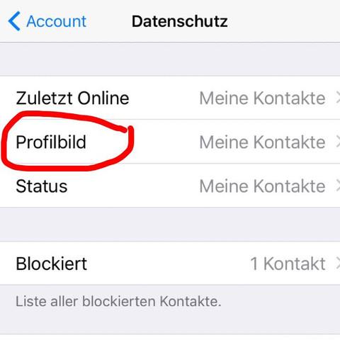 Kann ich bei WhatsApp einzelnen Leuten mein Profilbild