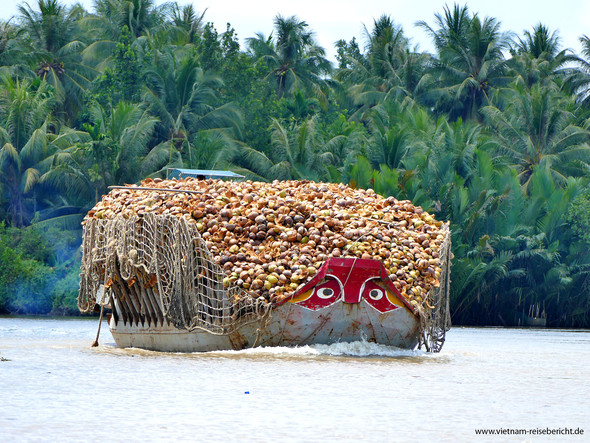 Ausflug ins Mekong Delta - (Freizeit, Urlaub, Ratgeber)