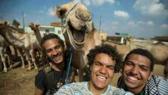 Selfies in Ägypten - (Politik, Ägypten, Investition)