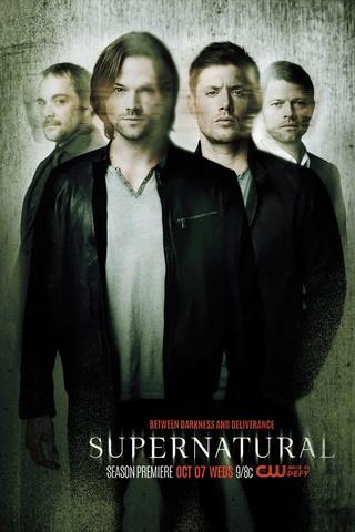 Poster von der 11. Staffel - (Serie, Fernsehen)
