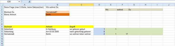 - (Computer, Excel, Programmierung)