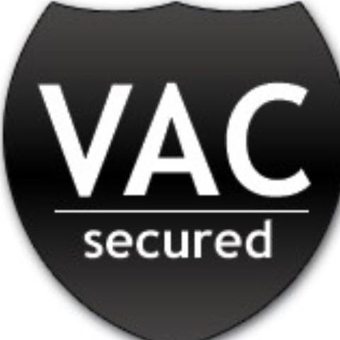 ValveAntiCheat  - (Computer, Internet, Steam)