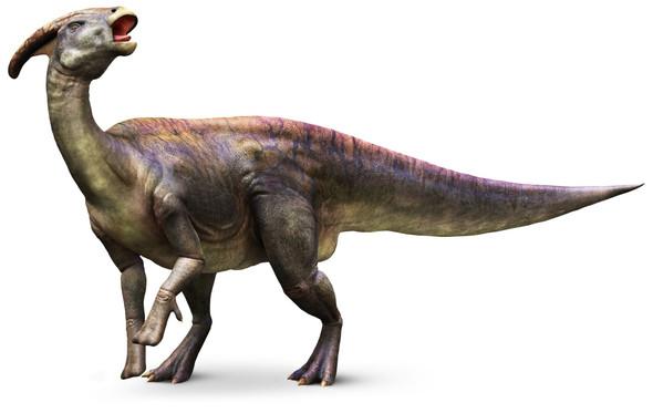 Ein Parasaurolophus mit langgestrecktem Kamm. - (Freizeit, Uhrzeit, Geräusche)