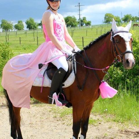 Bildvorschlag - (Pferde, kostümreiten)