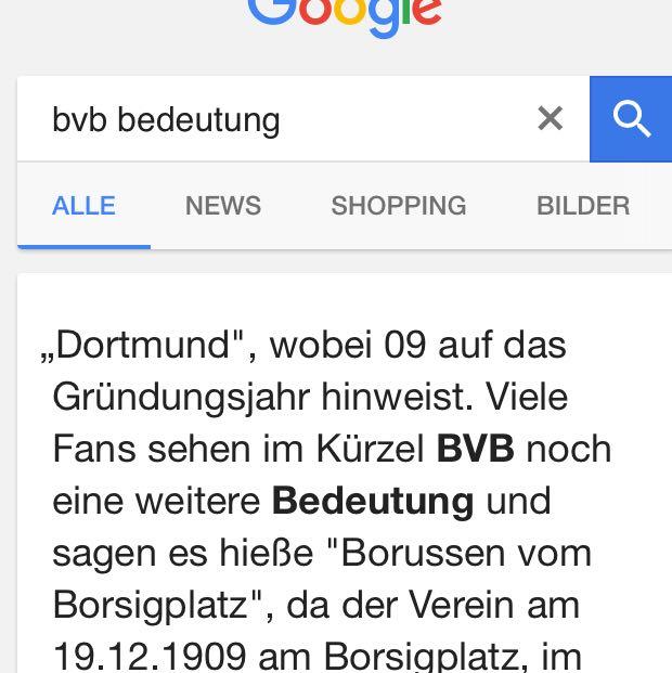 was heißt bvb