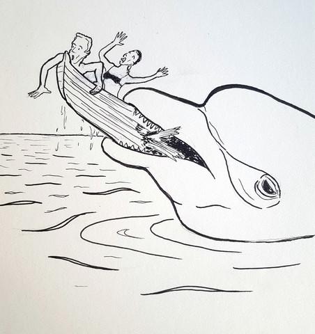 - (Tiere, Delfine)