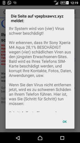- (Internet, Viren, Trojaner)