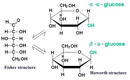 Fructose - Fisch...D Fructose Haworth Projection