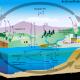 Kohlanstoffzyklus