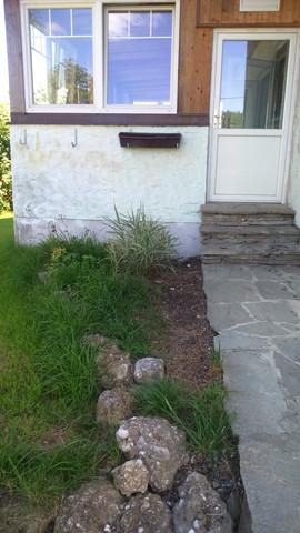 - (Garten, Pflanzen, Gestaltung)