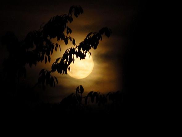 farbiger Mondaufgang - (Astronomie, Mond, mondfinsternis)