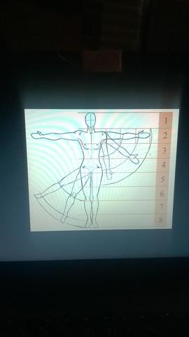 proportzion der Frau - (Kunst, zeichnen, Künstler)